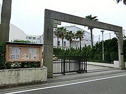 藤沢市立湘洋中...