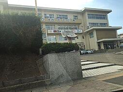 中央中学校 1...