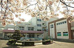 小学校小金井市...