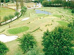 中央公園ゴルフ...