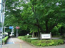 谷津の森公園