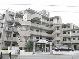 セザール上福岡東
