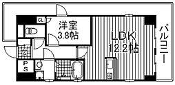 エイペックス心斎橋東[13階]の間取り