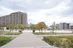 小寄公園(75...