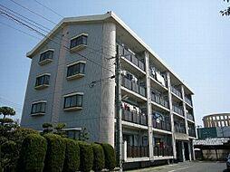 福岡県糟屋郡志免町南里3丁目の賃貸マンションの外観
