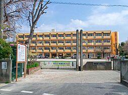 周辺環境-小学...