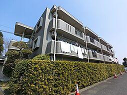 千葉県印旛郡酒々井町酒々井の賃貸マンションの外観