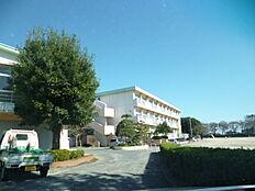 日立市立大沼小学校(738m)