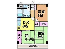 愛媛県伊予郡砥部町川井の賃貸マンションの間取り