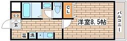 兵庫県神戸市須磨区前池町1丁目の賃貸マンションの間取り