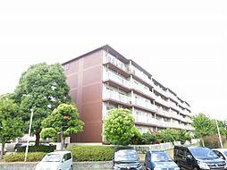 東新井団地12号棟