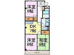 愛知県知多市新舞子東町1丁目の賃貸マンションの間取り