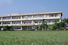 作岡小学校