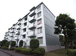 東新井団地22号棟