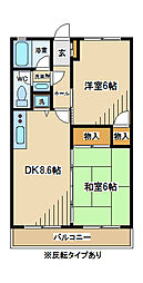 東京都府中市分梅町1丁目の賃貸マンションの間取り