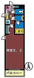 エーデルTD[305号室]の間取り