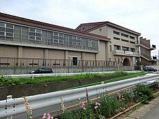 町田市立 忠生中学校 距離約1000m