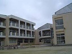 泉丘中学校
