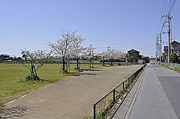 八潮南公園 4...