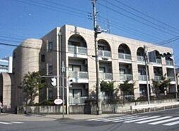 埼玉県飯能市南町の賃貸マンションの外観