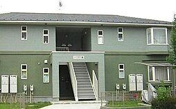 神奈川県秦野市今泉の賃貸アパートの外観