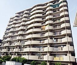 エスポワール平坂 503
