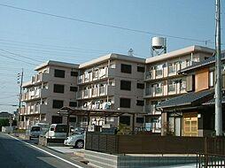 サンライト東刈谷[102号室]の外観