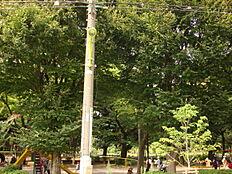 公園世田谷公園まで316m