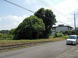 富士見ヶ丘団地...