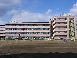 東中学校。23...