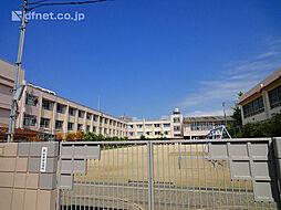 竹谷小学校  ...