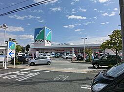 ヤマザワ白山店...