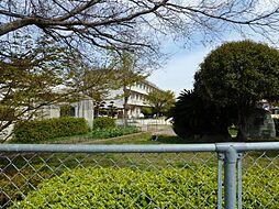 吉浜小学校
