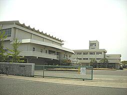 稲美中学校…約...