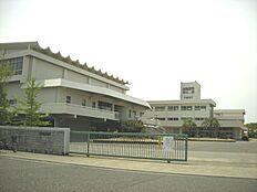 稲美中学校…約900m