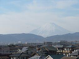 雄大な富士山が...