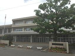 富陽小学校 1...