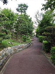 種々の木々の緑が心地よい、敷地内通路。