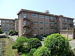 大和田小学校 ...