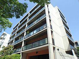 シャトレ甲南[3階]の外観