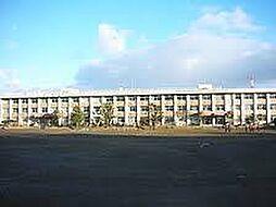 富谷中学校