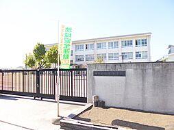 堺市立白鷺小学...