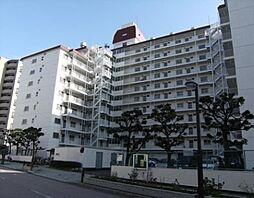 プリメーラ平塚 8階