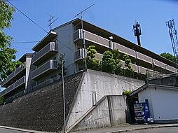 クリアコート寺谷[3階]の外観