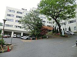 病院 約775...