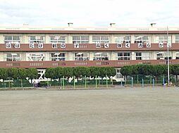 鶴沢小学校19...