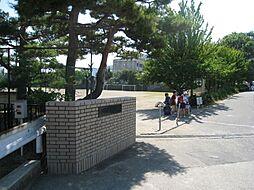 浅川小学校 約...