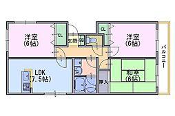 ルミエール円山Cブロック[1階]の間取り