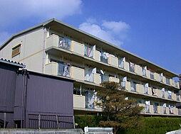 福岡県大野城市上大利4丁目の賃貸マンションの外観