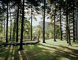 日野緑地:徒歩...